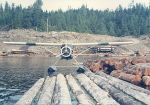 Beaver Parked at Log Raft Photo Credit: Author
