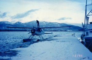 Cleaning Snow Off The Wings Of A Beaver. Ketchikan. Photo Credit: Author
