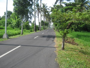 Seseh Beach Road, BaliPhoto by Author
