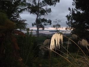 Sunrise Over Rotorua