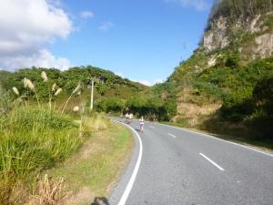 Road near Okareka Lake