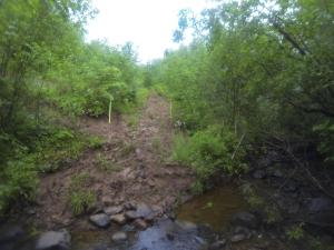 Power Line Creek Crossing